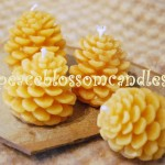 Beeswax Tiny Pine Cone Candles