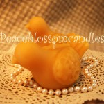 Beeswax Dove Candles