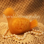 Beeswax Dove Candle