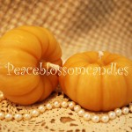 Beeswax Pumpkin Candles