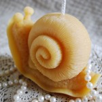 Beeswax Snail Candle