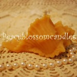 Beeswax Shell Candle