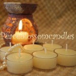 White Beeswax Tealights