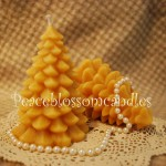 Beeswax Tree Candles