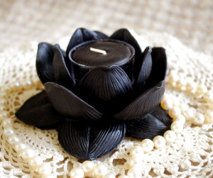 black-lotus-holder-1